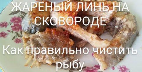 Пошаговый видео рецепт Торт: бисквит, крем, шоколадная глазурь, фруктовое украшение. Рецепты тортов - Готовим вкусно cook delicious food